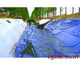 低密度聚乙烯土工膜