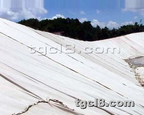 土工材料网提供生产一布一膜厂家