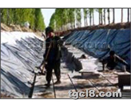 土工材料网提供生产LDPE土工膜厂家